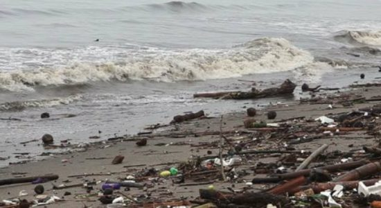 Over 238 tonnes of waste collected in coastal areas every week
