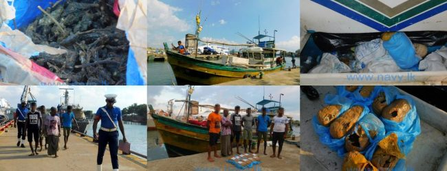 Navy apprehends a trawler transferring Kerala cannabis in the seas off Galle
