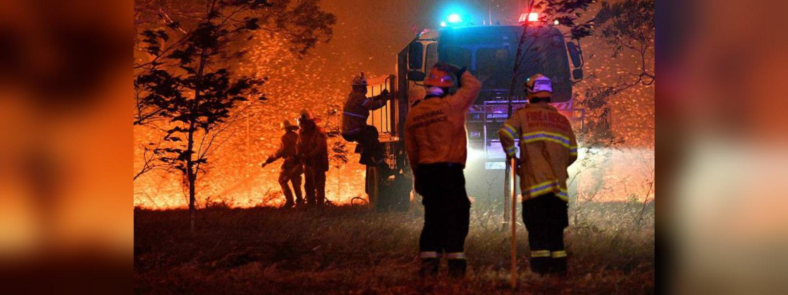 Australia fires: NSW declares week-long state of emergency