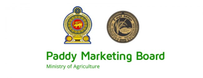 Paddy marketing board increases limit placed on paddy purchases