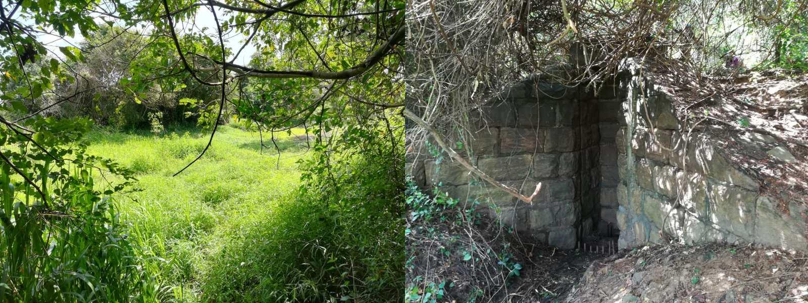 The ownerless Wewa in Mahiyanganaya