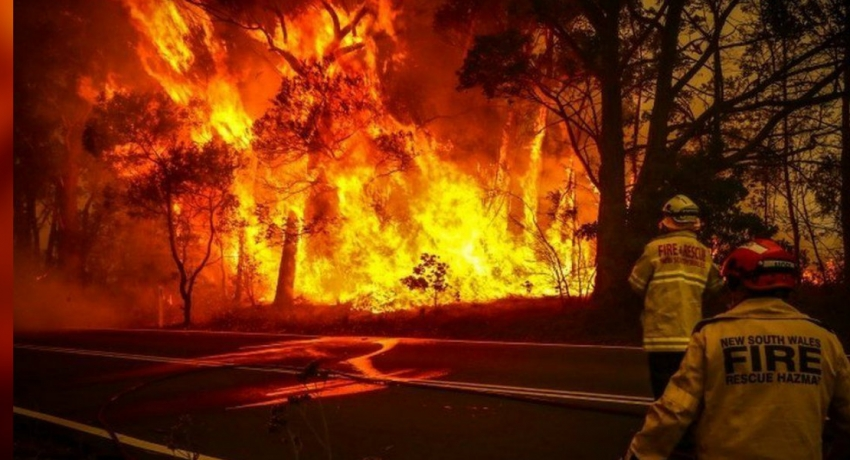 Strong winds hamper efforts to control Australian bush fires