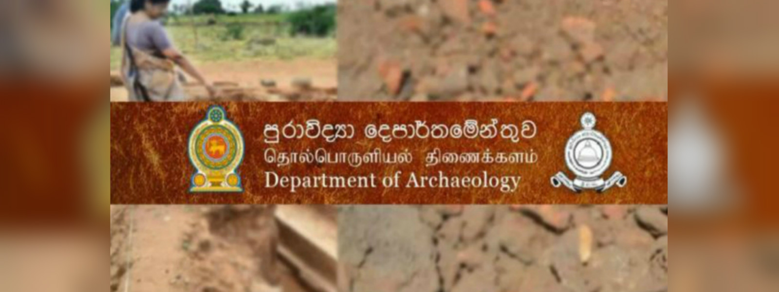 Dr. Senarath Dissnayake reappointed as Archeology Director-General
