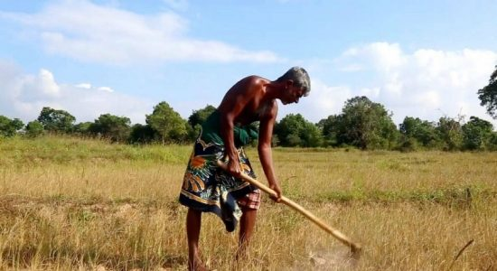 Farmers urged to conserve water