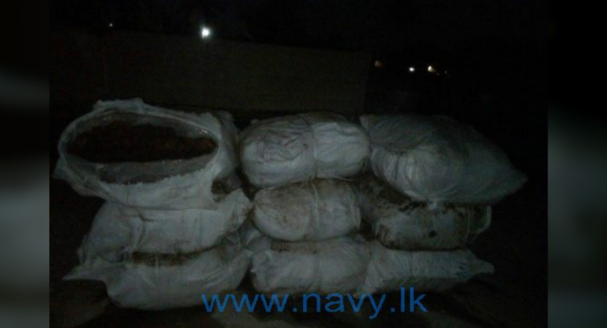 Navy recovers 700kg of wet beedi leaves in Sinnapadu seas