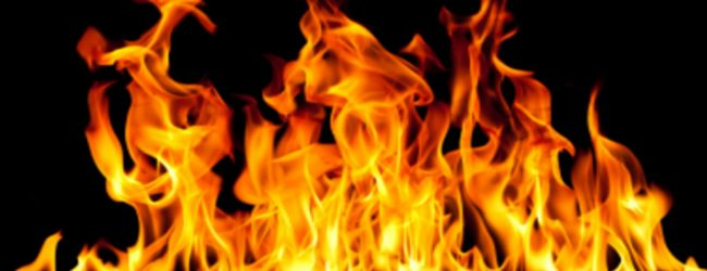 Fire erupts in timber company in Moratuwa