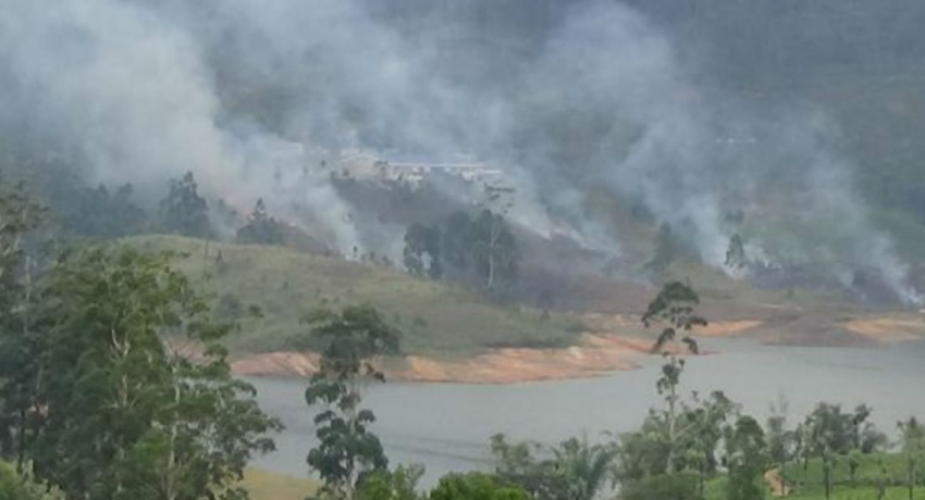 Fire destroys 10 acres of Castlereigh reserve