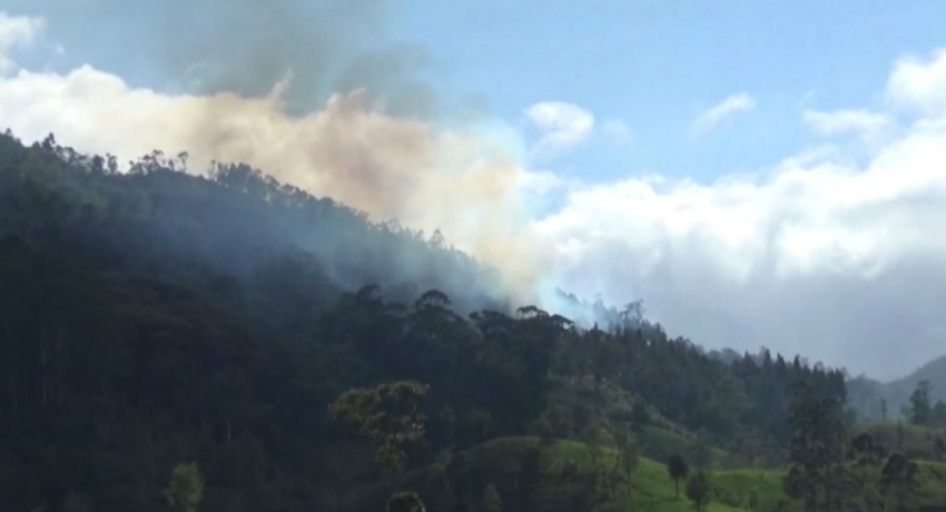 SLAF helicopter deployed to douse forest fire in Hatton