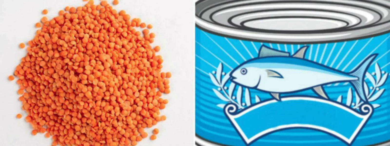 Govt to compensate importers to maintain Dhal and Salmon prices