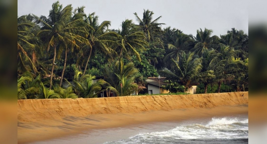 Environmentalists concerened over beach nourishment projects