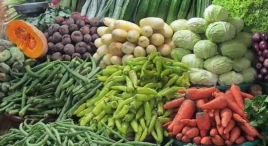 Prices of vegetables at Dambulla economic centre decreases
