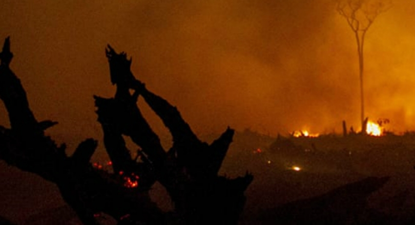 8 suspects linked to the Hagala forest fire, arrested