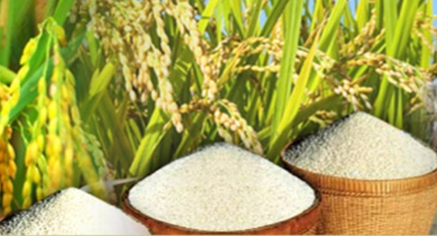 Civil Security Department to support rice mill operations on request