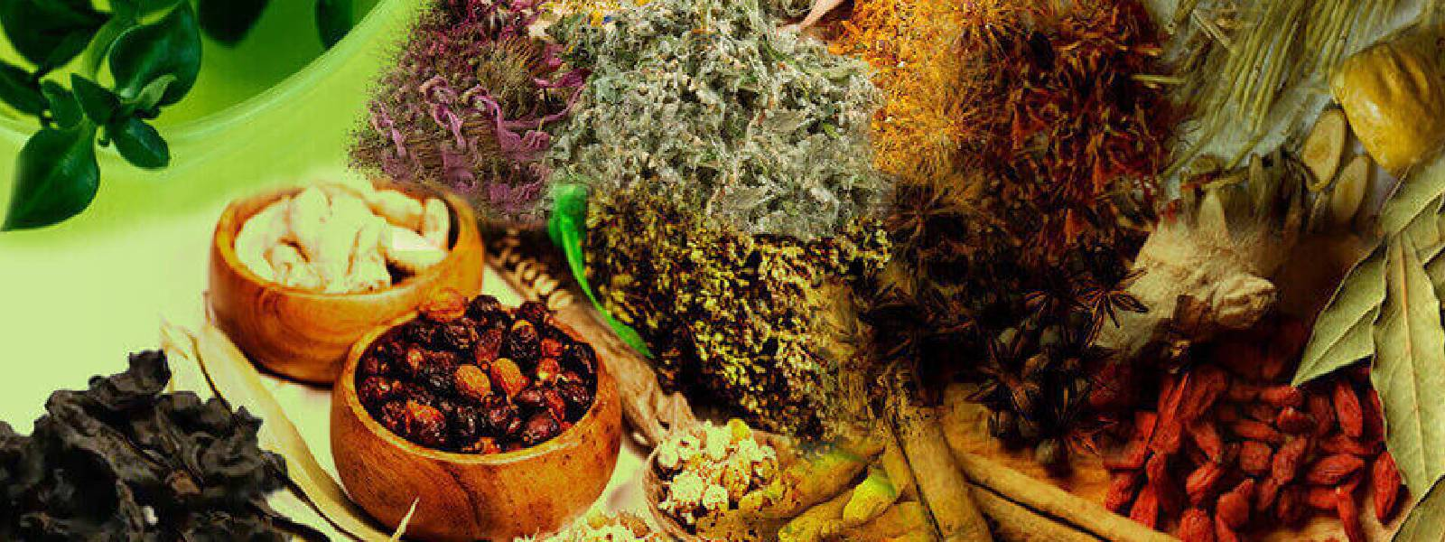 All Ayurveda hospitals to be kept open during the curfew