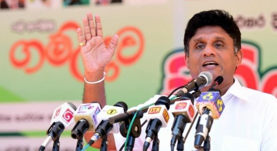 Sajith urges govt. to suspend dairy heifer imports
