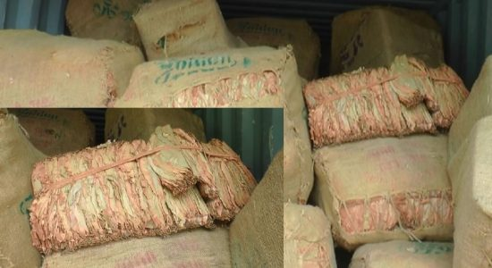 Rs. 122 Mn worth Beedi Leaves discovery; Customs seeks CID assistance