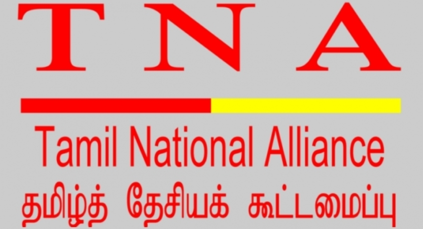 TNA to conditionally support constitutional amendment