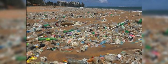 Large amounts of waste wash up on Mt. Lavinia beach