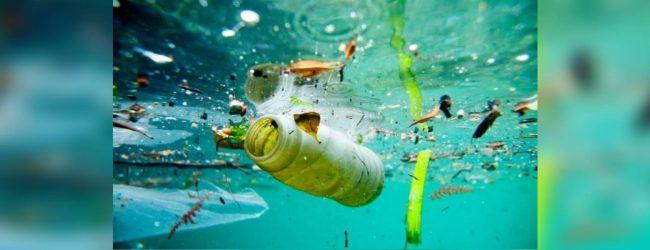Humans ingesting micro plastics due to ocean pollution – expert