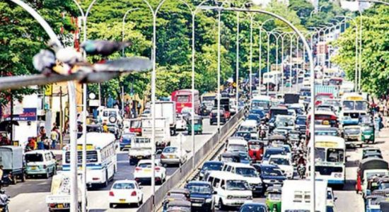 Vehicle registrations rise amidst import suspension