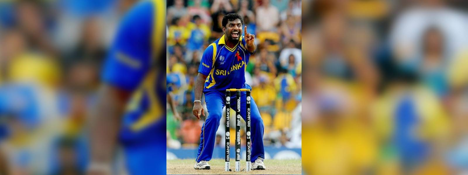 Muralitharan rejects request to become governor, contest elections
