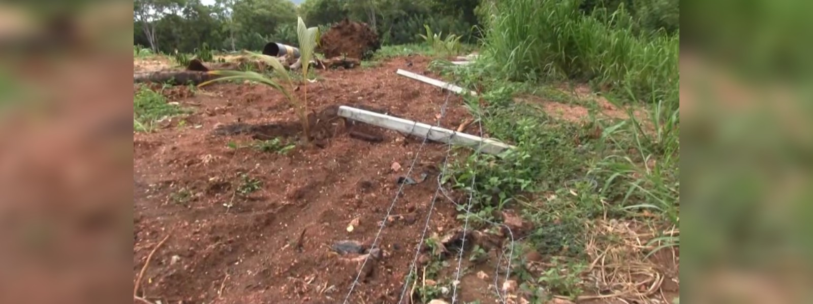 Dispute over four acre land in Dambulla
