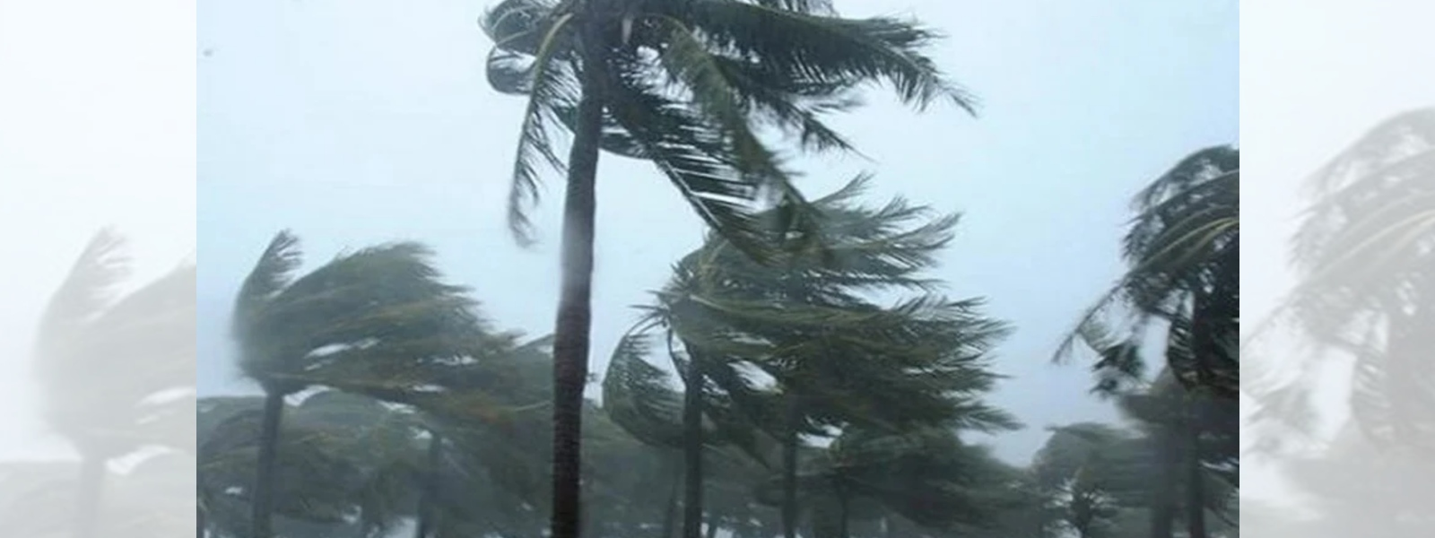 Over 3000 houses damaged due to gale force winds