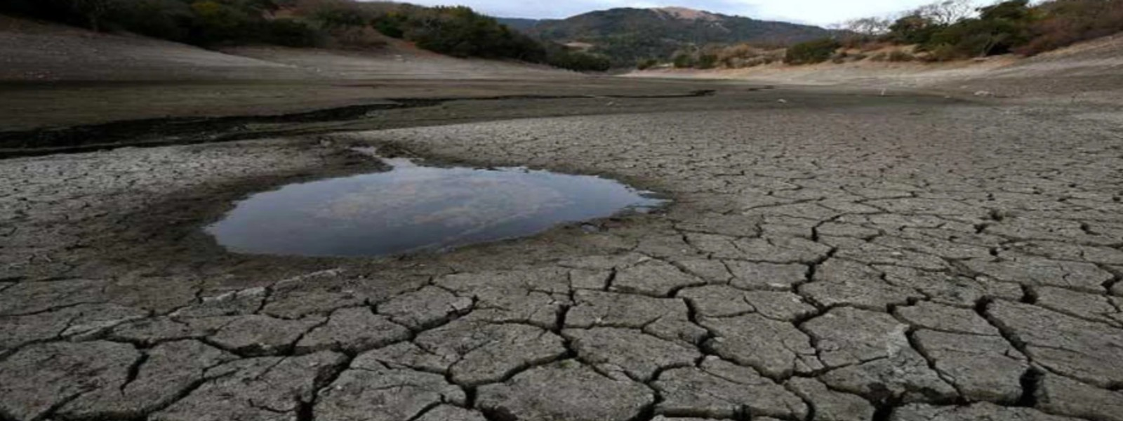 More than 232,000 people affected due to dry weather conditions: DMC