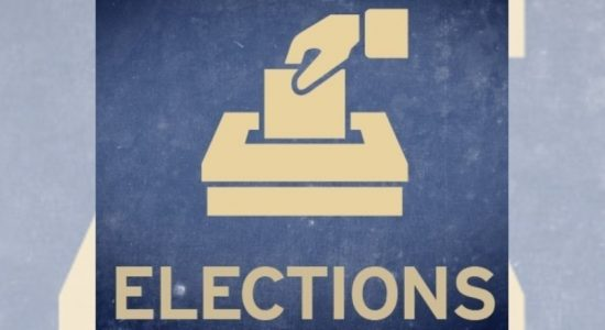 Delayed provincial poll to be held next year, govt. lawmakers say