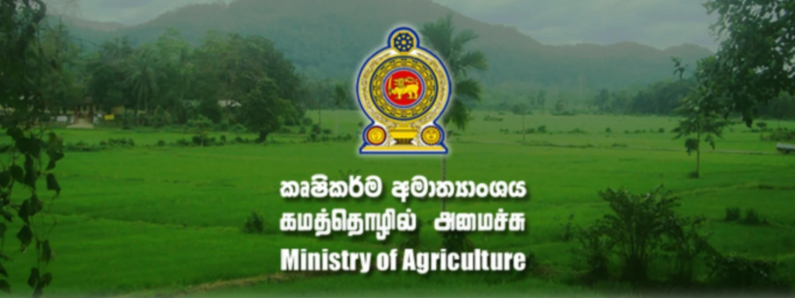 Income from exportation of agricultural produce increase: Dept. of Export Agriculture