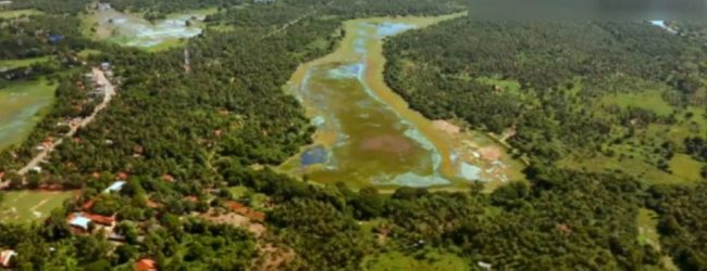 Facts presented to court over destruction of Anawilundawa Wetland Sanctuary