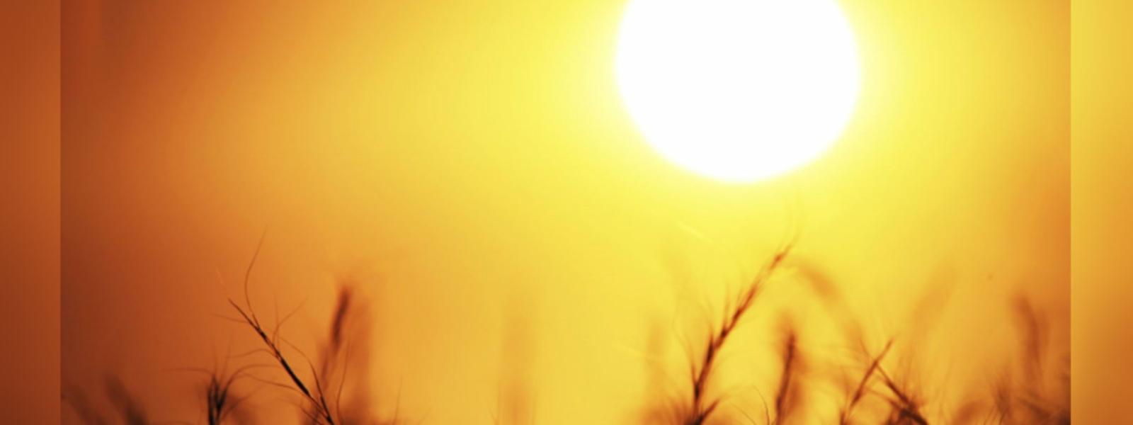 Sun directly over Sri Lanka from 28th August to 7th September: Met. Dept.