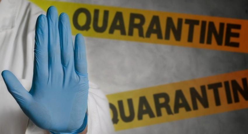 6,901 people in 67 tri-service-managed QCs are still in quarantine.