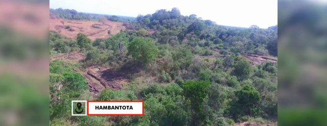 Residents complain of deforestation on proposed elephant reserve in Hambantota