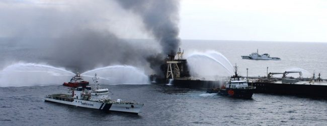 Marine life affected due to oil leak from New Diamond tanker