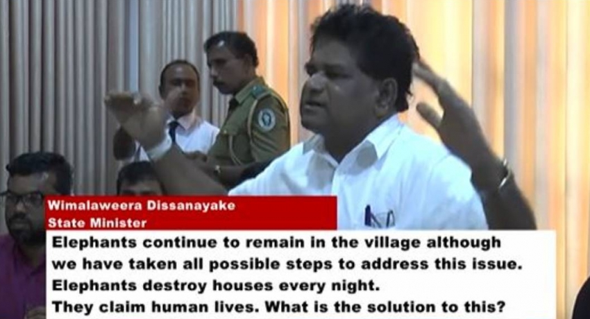 Tense situation over human-elephant conflict in Ampara