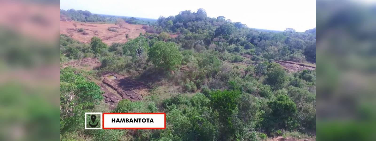 Residents complain of deforestation on proposed elephant reserve in Hambantota