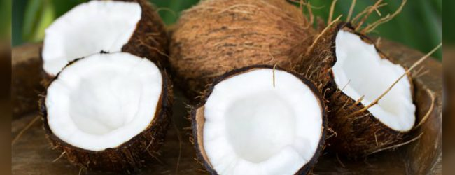 Maximum Retail Price imposed for coconuts with immediate effect