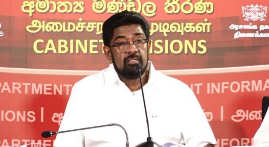 President and Cabinet take responsibility for 20A; Keheliya Rambukwella