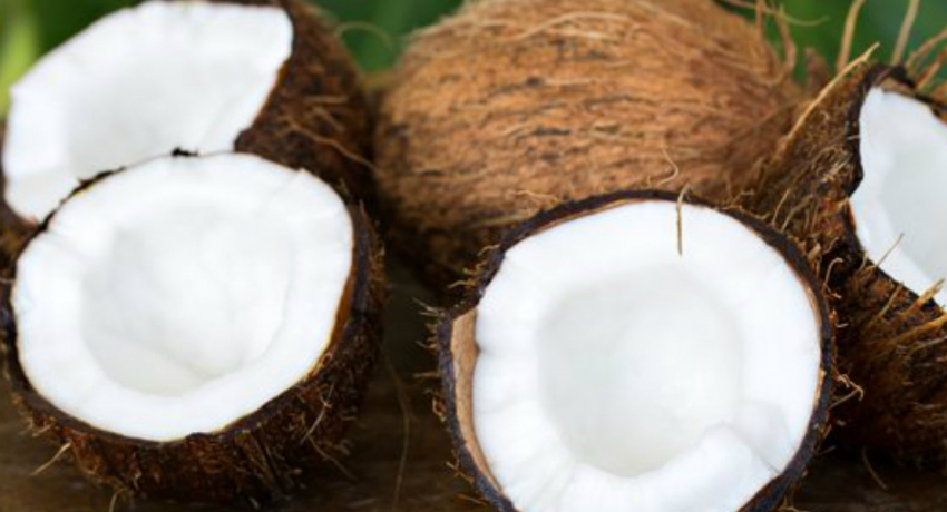 Coconut Cultivation Board to provide coconuts at concessionary prices