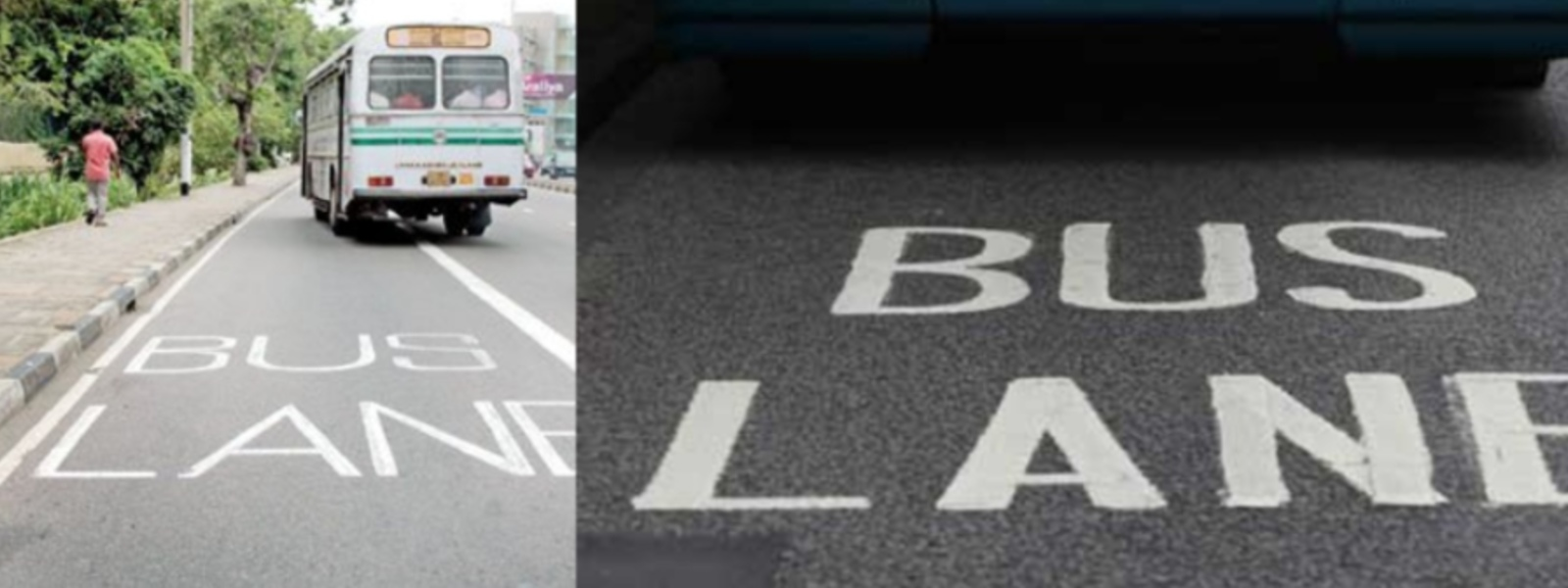 Bus Priority Lane rule in effect from tomorrow: SL Police