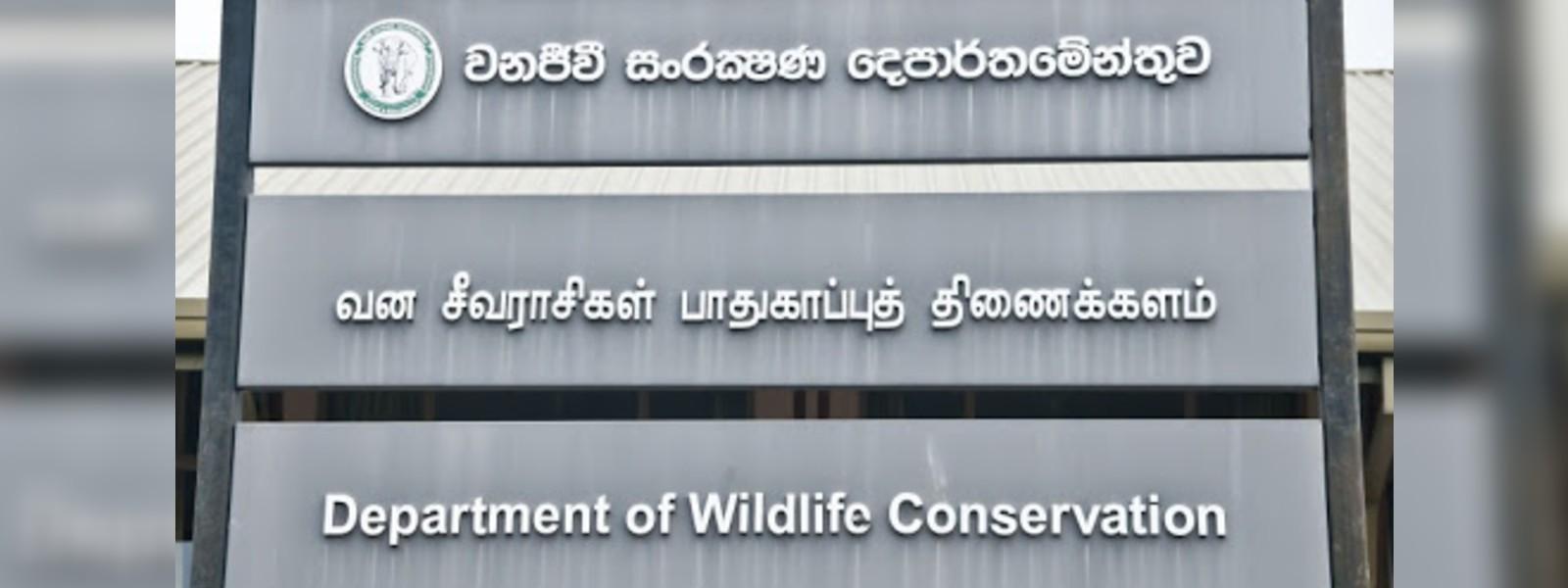 Rise in rabies in Millaniya