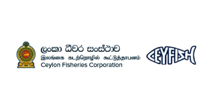 CFC purchases over 80,000 kg of fish from harbours
