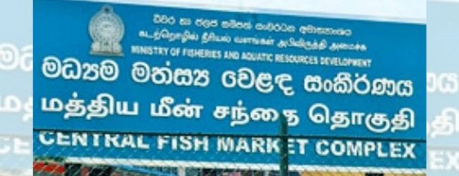 Operations at Peliyagoda Fish Market to resume once Health Ministry gives the go-ahead