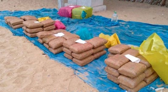 Navy seized 213 kg of Kerala Ganja worth over Rs. 63 Million