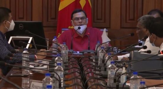 PC Elections will be discussed with Elections Comm.; Basil Rajapaksa