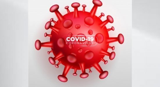 444 COVID-19 cases reported from Colombo District on Sunday (13)
