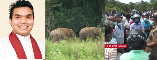 Wild Elephant Management Reserve will be gazetted; says Namal R.
