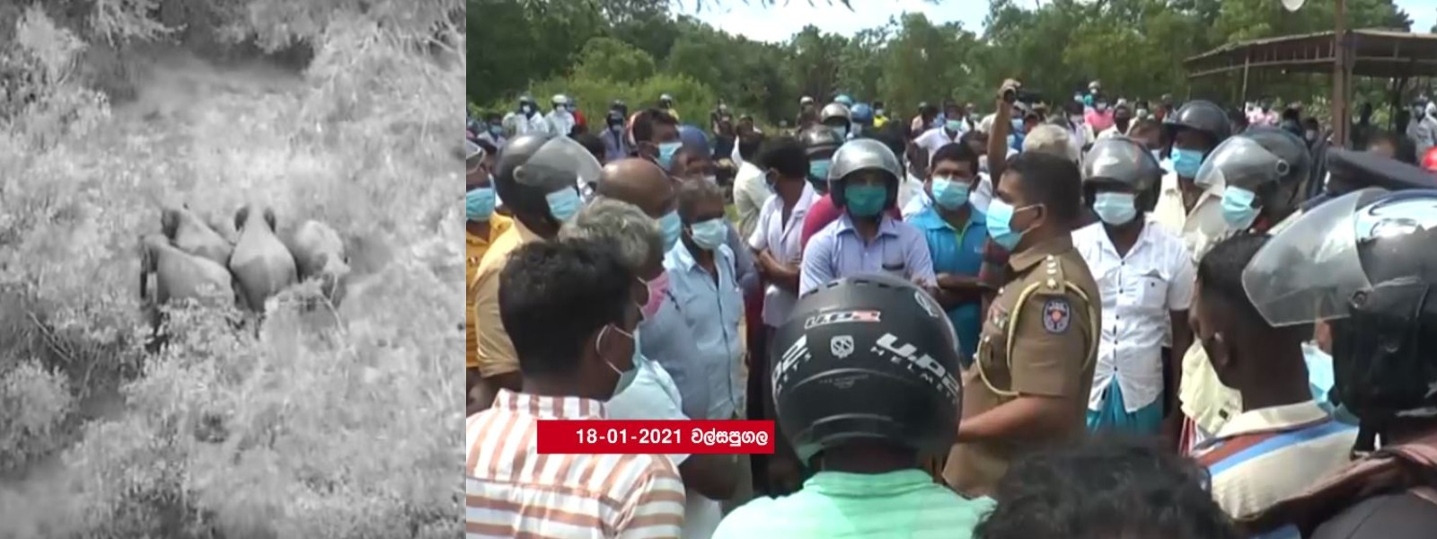 WALSAPUGALA PROTEST DEMANDS ELEPHANT RESERVE GAZETTE