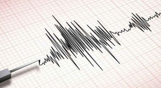 Minor tremor recording 2.0 in the Richter Scale reported from Ridimaliyadda